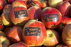 Apple colhe, Betuwe, com etiquetas X-mas alegres Imagens de Stock