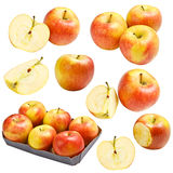 Apple collection Royalty Free Stock Photos