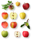 Apple collection stock image