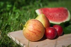 Apple com outros frutos no jardim Fotografia de Stock Royalty Free