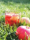 Apple compote Stock Image