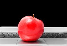 Apple on computer Stock Images