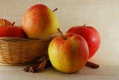Apple con cinamomo Imagen de archivo libre de regalías