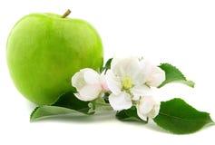 Apple con i fiori Fotografia Stock
