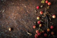 Apple con i ramoscelli e le foglie sull'orizzontale di pietra marrone del fondo Fotografia Stock