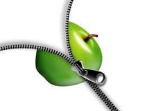 Apple con la chiusura lampo Fotografia Stock