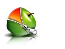 Apple con la chiusura lampo Fotografia Stock Libera da Diritti