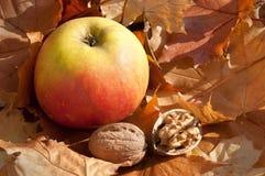 Apple con las tuercas Foto de archivo libre de regalías