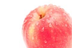 Apple con le gocce di acqua immagine stock