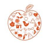 Apple con símbolos ambientales Imagen de archivo libre de regalías