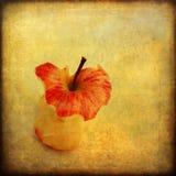 Apple core on grunge background Royalty Free Stock Photos