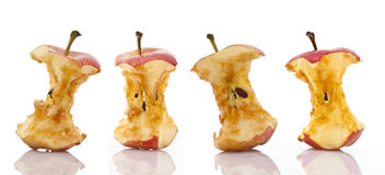 Apple Cores. Over white background Royalty Free Stock Images