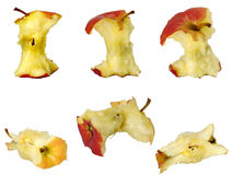 Apple cores Stock Photography