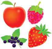 Apple, corinthes, framboise, fraise Photographie stock