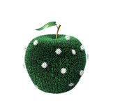 Apple covered with a grass Royalty Free Stock Image