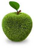 Apple covered with green grass Royalty Free Stock Photos