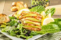 Apple cranberry chicken salad Royalty Free Stock Photos