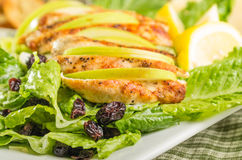 Apple cranberry chicken salad Royalty Free Stock Image