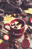 Apple and cranberry tea in red cup, warming scarf, apples, nuts Royalty Free Stock Photos