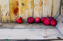 Apple Crate. Image of a few apples inside of a crate at an apple orchard Stock Image