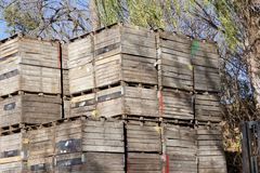 Apple Crates Stacked High Royalty Free Stock Image