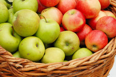 Apple crop in a basket Royalty Free Stock Image