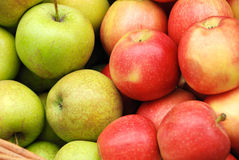 Apple crop in a basket Royalty Free Stock Images