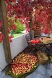 Apple crop spread on the terrace Royalty Free Stock Photos