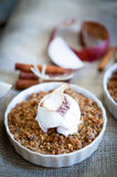 Apple Crumble Dessert With Cinnamon And Vanilla Ice Cream On Wooden Background stock photo