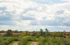 Apple cultiva Autumn Landscape Fotos de archivo