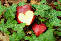 Apple with the cut out heart. And a bunch of flowers Royalty Free Stock Image