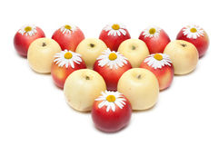 Apple and daisywheels Royalty Free Stock Photography