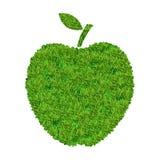 Apple dall'erba Fotografia Stock