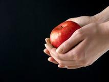 Apple dans des mains Images stock