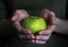 Apple dans des mains femelles Photo libre de droits
