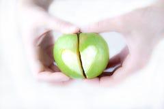 Apple dans les mains Image stock