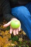 Apple dans les mains Photo stock