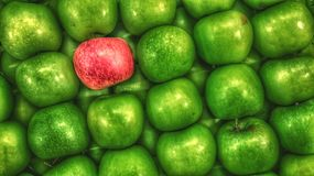 An apple a day royalty free stock images