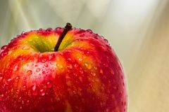 An Apple A Day... royalty free stock photography