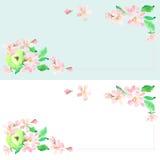 Apple-de achtergrond van de bloesemappel, kaart, etiket Vectorwaterverf t Royalty-vrije Stock Foto