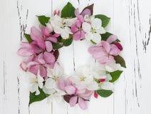 Apple-de kroon van de bloembloesem op een oude uitstekende houten achtergrond Stock Fotografie