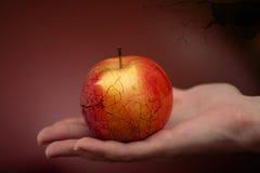 Apple de la discordia Imagen de archivo
