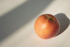 Apple debajo del sol Imágenes de archivo libres de regalías