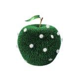 Apple deckte mit einem Gras ab Lizenzfreies Stockbild
