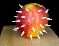 Apple, dekorujący z prickles, na drewnianej desce na czarnym bac zdjęcia stock