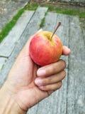 Apple in der menschlichen Hand Stockfotos