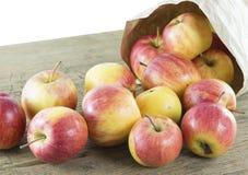 Apple des natürlichen Lichtes Lizenzfreies Stockbild