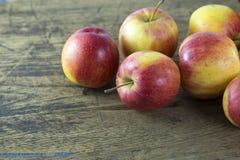 Apple des natürlichen Lichtes Stockbild