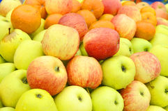 APPLE DIFFERENT COLOR Stock Image