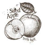 Apple dirigent le calibre de conception de logo Fruit frais Photographie stock